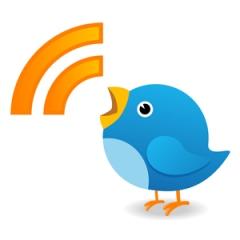 Twitter bird trend Topics